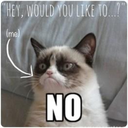 Rachael Rice - Grumpy Cat